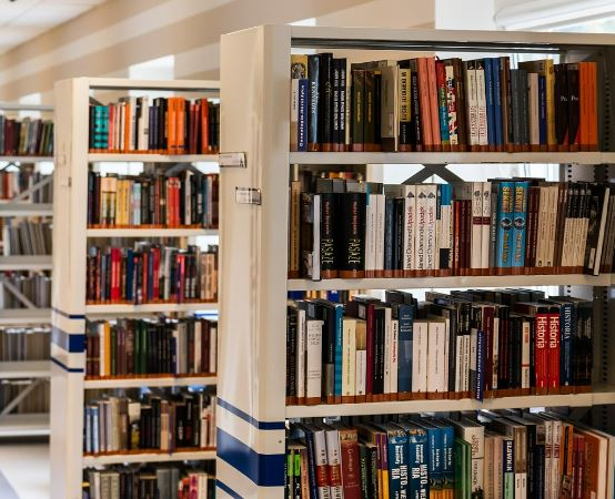 Biblioteka Kędzierzyn Koźle: Wieczór z sowami